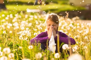 Beat Hay Fever